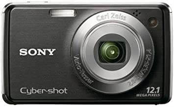 Sony Cybershot DSC-W220 12.1MP Digital Camera with 4x Optical Zoom with Super Steady Shot Image Stabilization (Black)