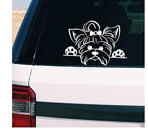 MDGCYDR Car Stickers and Decals Flowers Vinyl-Aufkleber-Aufkleber-Auto-Dekor, Welpen Spähen Yorkie Hunderasse Haustier-Aufkleber Für Tasse-Laptop-Dekoration