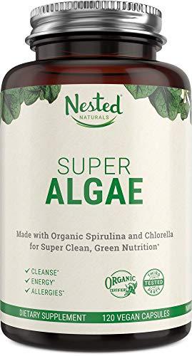 Super Algae Powder Supplement 500mg   Certified Organic & Vegan Blue Green Algae Capsules   50/50 Spirulina + Chlorella Superfood Algae Powder   Support Healthy Cleanse & Gut Health