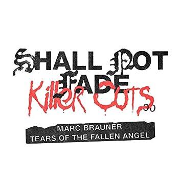 Tears Of The Fallen Angel