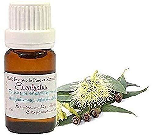 Huile Essentielle H.E.B.B.D. d' Eucalyptus Radié (Eucalyptus radiata) (10ml)