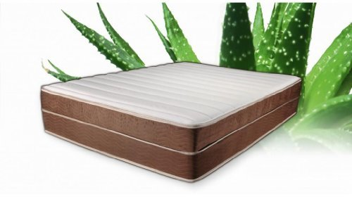 Brooklyn Bedding Queen 14' Aloe Alexis Custom Comfort Latex Mattress with 6 inches of Latex