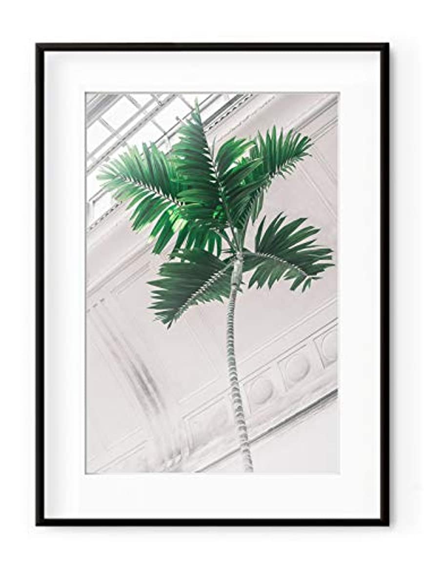Inside The Green House 7 Satin Black Aluminium Frame with Mount, Multicolored, 30x40