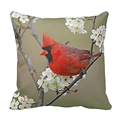 Decorative Cotton 18 X 18 Twin Sides Male Northern Cardinal among pear tree Throw Pillow Cover