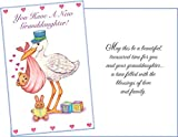 New Granddaughter Greeting Card - 88172
