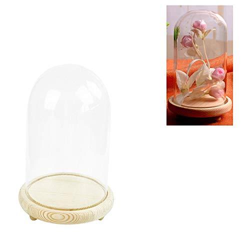 Warmiehomy Campana de Vidrio Decoracion, Campana de Cristal Decorativa con Base de Madera, Cúpula de Vidrio, Cupula de Cristal, Urna Cristal Decorativa, Transparente