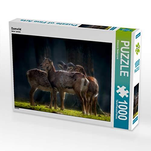 CALVENDO Puzzle Damwild 1000 Teile Lege-Größe 64 x 48 cm Foto-Puzzle Bild von Eleonore Swierczyna