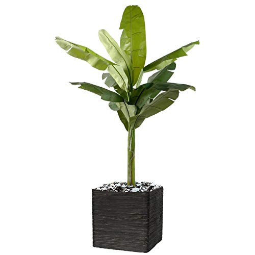 Artificielles.com – Bananero en maceta artificial de 150 cm de alto con realismo – Altura 150 cm – Color: Verde