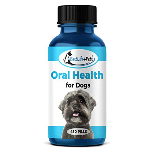 BestLife4Pets Oral Health for Dogs Dental Remedy - Highly Effective Natural Treatment for Inflammatory & Ulcerative Ailments  Stomatitis and Gingivitis. No Smell  No Side Effects