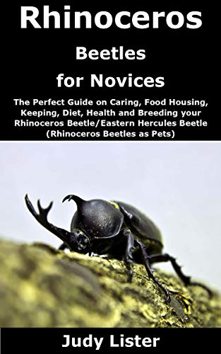 Rhinoceros Beetles for Novices: The Perfect Guide on Caring, Food Housing, Keeping, Diet, Health and Breeding your Rhinoceros Beetle/Eastern Hercules Beetle ... Beetles as Pets) (English Edition)