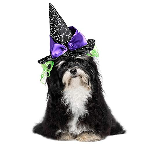 Sombrero para disfraces de bruja mascotas.