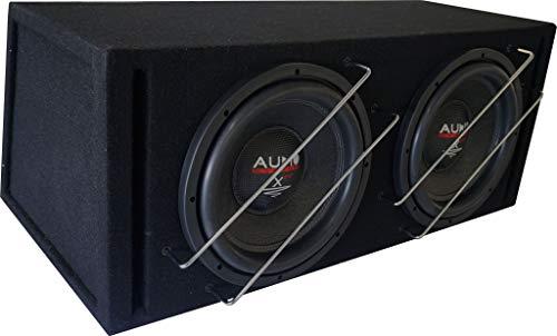 Audio System X 12 EVO BR-2 X-ion Series EVO Bassreflexgehäuse Subwoofer 2000 Watt RMS
