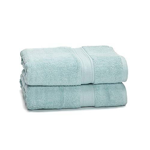 "eLuxurySupply 900 GSM 100% Egyptian Cotton Towel Set - 2-Piece 900 GSM Bath Towel Set - Premium Spa & Hotel Quality Heavy Weight & Ultra Absorbent Towels - 30"" x 55"" Seafoam Color"
