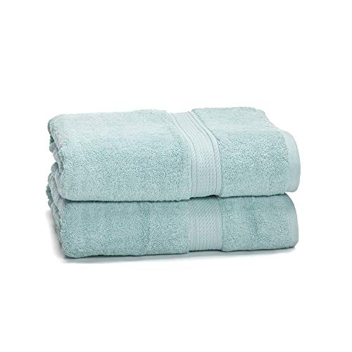 "eLuxurySupply 900 GSM 100% Egyptian Cotton Towel Set - 2-Piece 900 GSM Bath Towel Set - Premium Spa & Hotel Quality Heavy Weight & Ultra Absorbent Towels - 30"" x 55"" Seafoam Color"