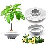 teezershop kit di coltivazione dell'albero di avocado ufo (con vaso porta piante) regali di giardinaggio per donne coltiva il tuo albero di avocado,semi non inclusi