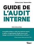 Guide de l'audit interne - Défis et enjeux, théorie et pratique