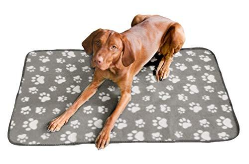 Quantum Interior Haustierdecke Hundedecke XL - ca. 100x150 cm, wasserdichte Unterlage, Haustier Decken für Hunde und Katzen Fleecedecke GRATIS Versand (Beige/Hellgrau)