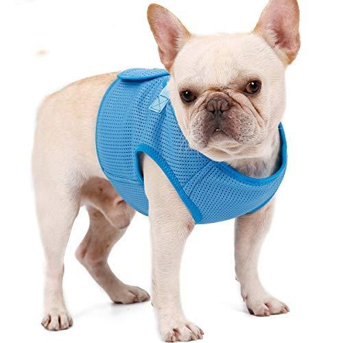PETTOM Hundegeschirr Step-In Air Mesh Vest Geschirr Brustgeschirr Hund Verstellbar für Welpen Kleine Mittelgroße Große Hunde (Rot/Schwarz/Pink/Blau)