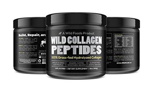 Collagen Peptides Protein Powder by Wild Foods | Gut-Friendly, Grass-Fed, Non-GMO, Paleo, All-Natural, Grass-Fed Bovine (1 pound)
