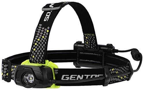 ジェントス『ゲインテックシリーズGT-391D』