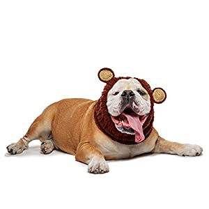 Zoo Snoods Grizzly Bear Dog Costume – Neck and Ear Warmer Hood for Pets (Large)