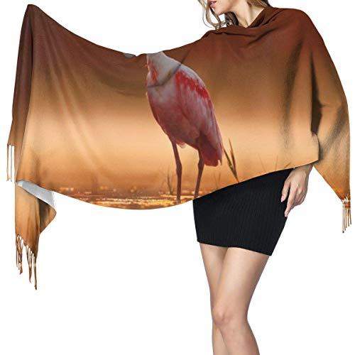 Pashmina Shawls and Wraps Scarf, Beautiful Sunrise And Birds Women's Fashion Long Shawl Winter Warm Large Scarf Cashmere Scarf