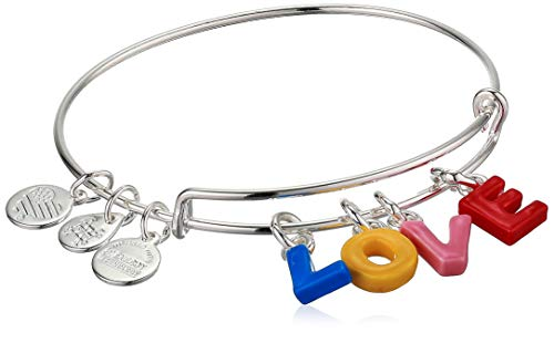 Alex and Ani Color Infusion Bangle Bracelet Silver/Love One Size