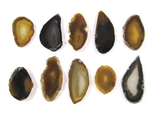 Zentron Crystals Colorful Set of 12 Polished Agate Slices in Velvet Bag (Natural)