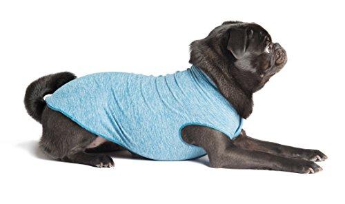 Gold Paw Sun Shield Dog Tee – T-Shirt for...