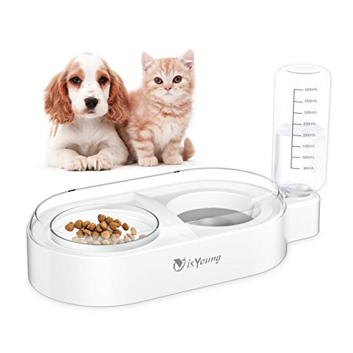 isYoung Double Dog Cat Bowls, Automatic Cat Water Dispenser Bottle with Detachable Glass Pet Feeder Bowl Cat Food and Water Bowls for Small Dog and Cat