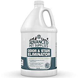 Best Carpet Cleaner Solution for Pet Stains | Top Picks and Buyer's