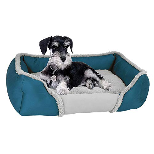 Zhouzl Home & Garden Pet Supplies Pet Beds Creative Cat Litter Pad Autumn Winter Warm Dog Bed Pet Breathable Nest, Specification: XL(Light Blue) Pet beds (Color : Light Blue)