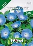 Sementi da fiore di qualità in bustina per uso amatoriale (CAMPANELLA O IPOMEA BLU)