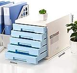 Archivador plano Plana de archivos planos Gabinete de archivos planos de la caja de almacenaje de muebles Archivo Gabinete 5 cajones de plástico con cajón de escritorio de alta capacidad puede almacen