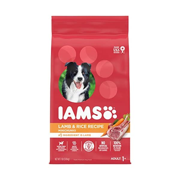 Iams Minichunks Adult Dry Dog Food Lamb & Rice Recipe Dog Kibble, 7 lb. Bag