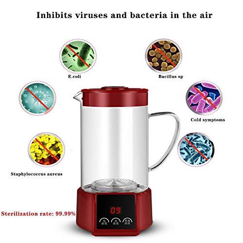 WFWPY Natriumhypochlorit-Generator Selbstgemachtes 84 Desinfektionsmittel Tragbare Desinfektionsflüssigkeitsmaschine Selbstgemachte Desinfektion für Küchen Badezimmer Glas Teppiche und mehr