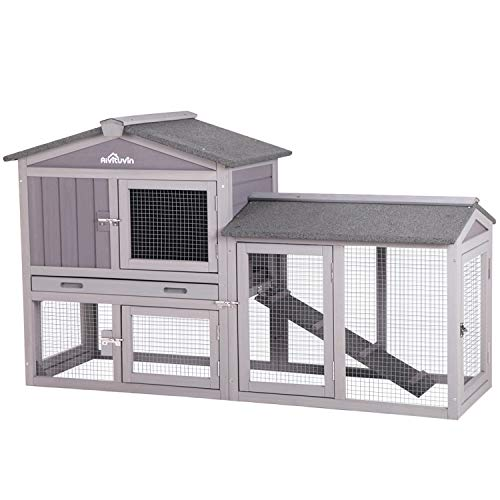 Best Rabbit Hutch Designs