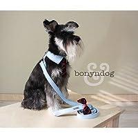 bonyndog (ボニエンドッグ) オックスフォード(boy ボーイ)ハーネス&リードセット L