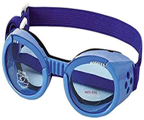 Doggles ILS Hundebrille, mittelgroß, Blauer Rahmen, Blaue Gläser