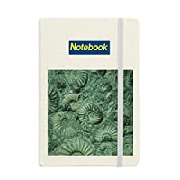 オウムガイの化石標本アンモナイト ノートブッククラシックジャーナル日記A 5