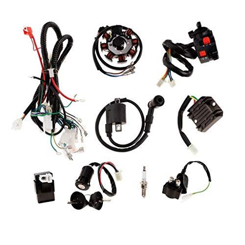RONGW JKUNYU Accesorios Cableado de Lavado de Lavado de Electricidad Completo CDI CDI Spark Plug para 150-250cc Quad Bike Buggy Gokart