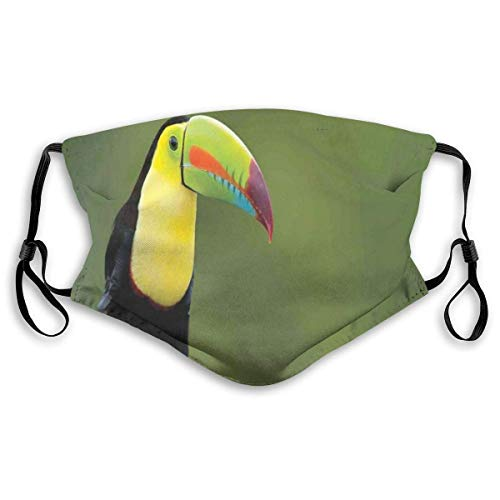 YYTT8 Gesichtsschutz Mundschutz Nasenschutz Wiederverwendbar Waschbar Gesichts Schals Kiel-berechneter Tukan auf Astbaum-Regenwald-Park-tropischer Vogel Amerika