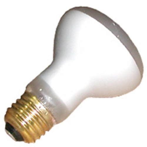 10 Qty. Halco 100W R20 FL 125V Halco SHORT R20FL100/S 100w 125v Incandescent Flood Short Halco Lamp Bulb