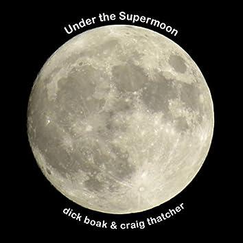 Under the Supermoon