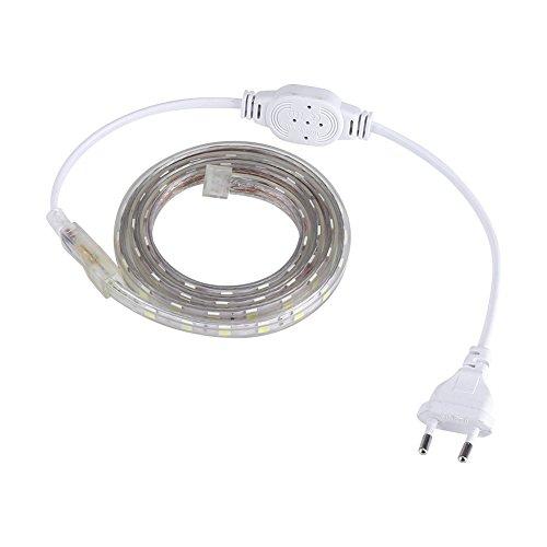 Asixx Ruban LED, 1m/5m/10m SMD 5050 Bande LED Étanche avec 60 LED/m Ruban LED 5050 Flexible pour DIY Décoration des Couloirs, des Escaliers, des Sentiers, des Fenêtres, etc, Prise UE(Blanc-1 Mètre)