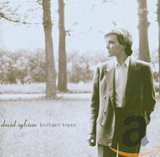 BRILLANT TREES-STANDARD-R