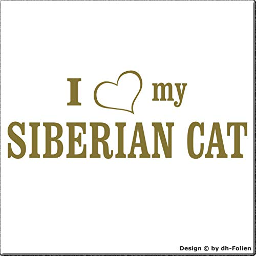 cartattoo4you® AI-02079 | I Love (als Herz) My Siberian CAT | K-Serie | 19 x 7 cm | Farbe Gold | Autoaufkleber Aufkleber Car Sticker Heckscheibe Katze Kater Tuning,in 23 Farben erhältlich