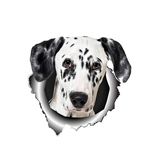 HENJIA Personalidad Perro Mascota Coche Vinilo Adhesivo Ventana Impermeable Accesorios Cubierta rasguño PVC 13 cm X 13 cm