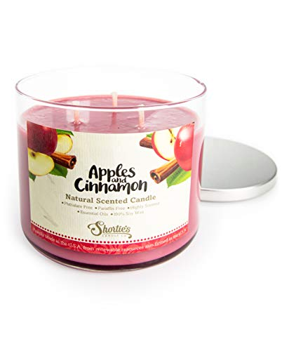 Apples & Cinnamon Scented 3 Wick Candle - All Natural - Made with 100% Responsibly Sourced Soy and Essential Fragrance Oils - Phthalate & Paraffin Free, Vegan, Non-Toxic