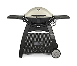 best small gas grill - weber Q3200
